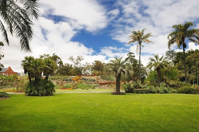 Sydney, 9 Lugares Que Debes Visitar, Jardin Botanico Real