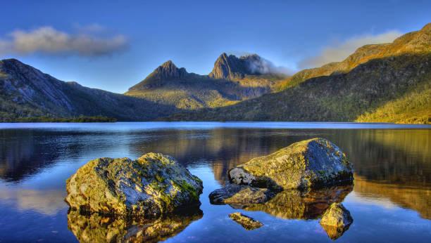 Tasmania, La Isla De Los Animales Fantásticos, Saint Clair