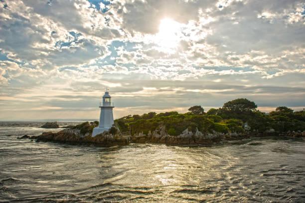 Tasmania, La Isla De Los Animales Fantásticos
