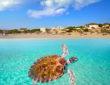 Conoce las Mejores Playas Públicas en Cancún. Playa Delfines.